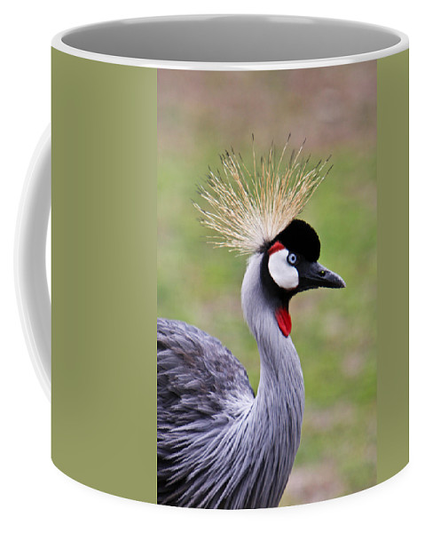 Bird Coffee Mug featuring the photograph African Crowned Crane by Douglas Barnett