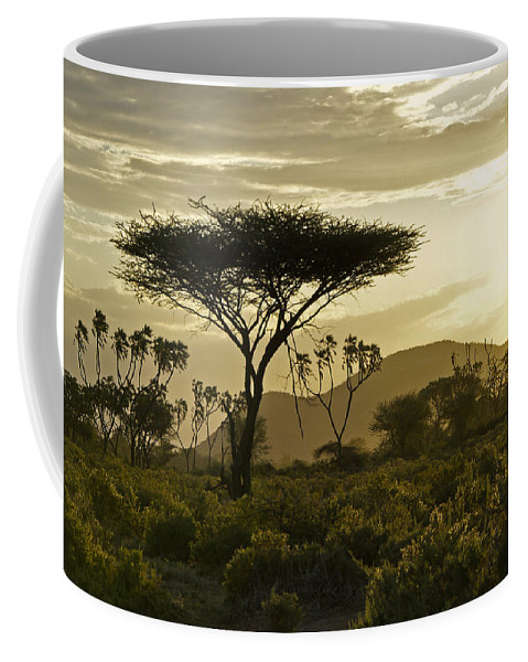 Africa Coffee Mug featuring the photograph African Interlude by Michele Burgess