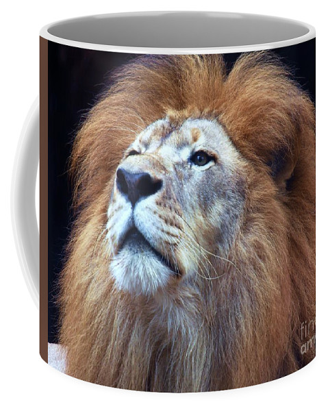 Wildlife Coffee Mug featuring the photograph African Lion by Randy Matthews