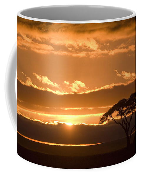 Africa Coffee Mug featuring the photograph African Sunrise by Michele Burgess
