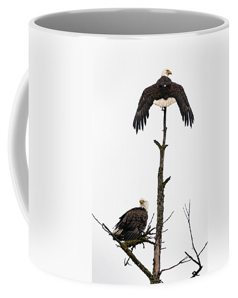 Eagles Coffee Mug featuring the photograph After A Hard Rain by Richard Rivard