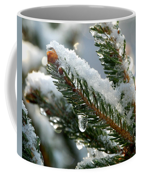 Winter Coffee Mug featuring the photograph After Christmas by Lisa Kane