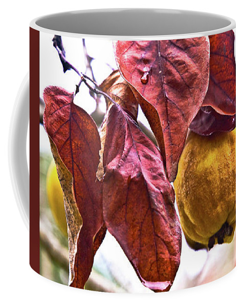 Leaves Coffee Mug featuring the digital art After Rain - Fall In Mendocino Orchard by Sterling Haidt
