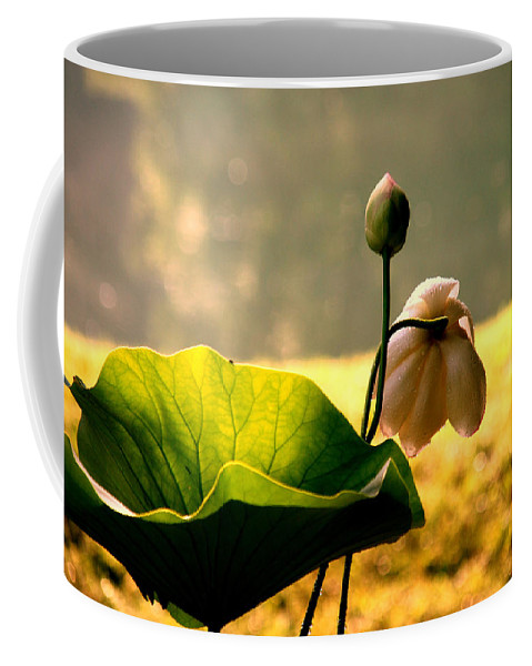 Flower Coffee Mug featuring the photograph After Rain by Susanne Van Hulst