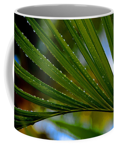 Photography Coffee Mug featuring the photograph After The Rain by Susanne Van Hulst