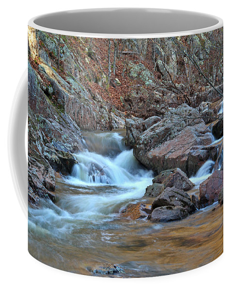 Pickle Creek Coffee Mug featuring the photograph After The Rains On Pickle Creek 1 by Greg Matchick