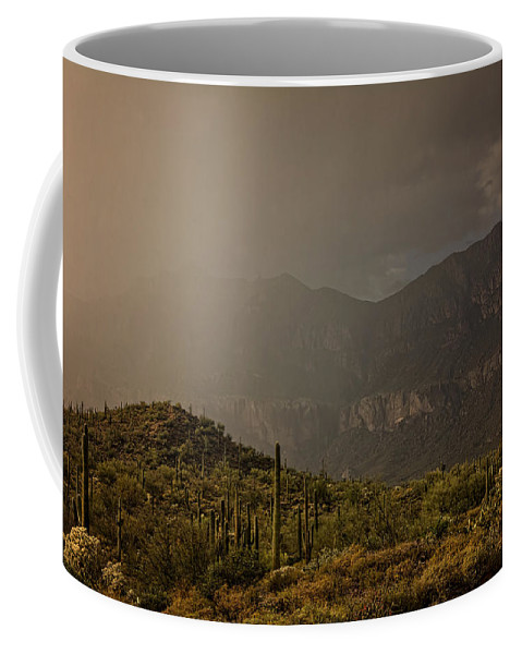 Arizona Coffee Mug featuring the photograph After The Spring Rain by Saija Lehtonen
