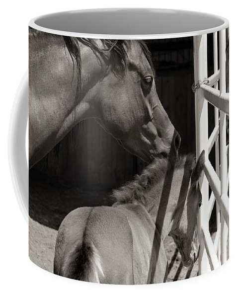 Mother Coffee Mug featuring the photograph Afternoon Visit by Marilyn Hunt