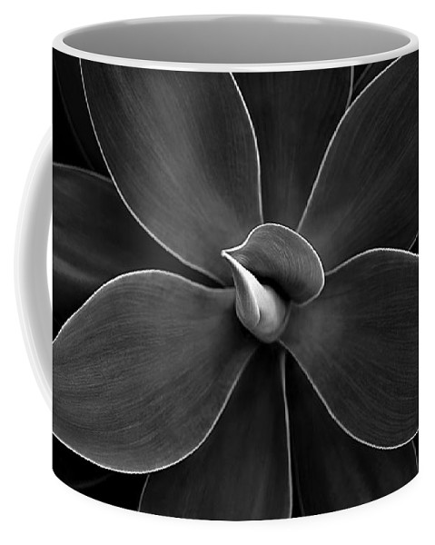 Agave Coffee Mug featuring the photograph Agave Leaves Detail by Marilyn Hunt