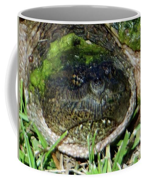 Algae Coffee Mug featuring the photograph Algae Face Common Snapper by Rockin Docks Deluxephotos