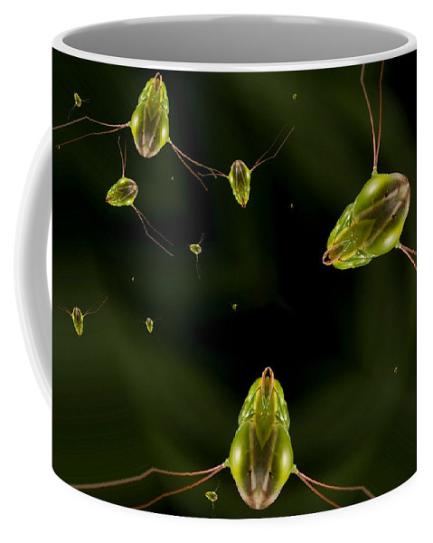 James Smullins Coffee Mug featuring the photograph Alien Sea Life by James Smullins