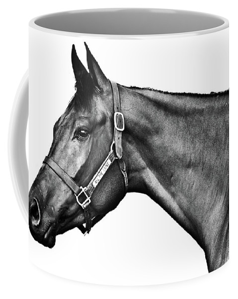 Horse Coffee Mug featuring the photograph All The Above by Charles Holloman