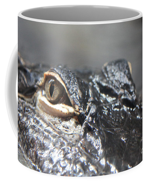 Alligator Coffee Mug featuring the photograph Alligator Eye by Carol Groenen