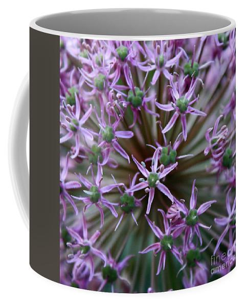 Nature Macro Coffee Mug featuring the photograph Allium Macro by Carol Groenen