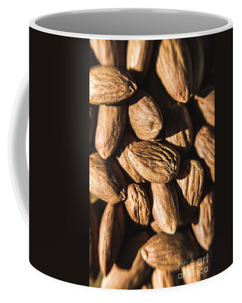 Almond Coffee Mug featuring the photograph Almond Nuts by Jorgo Photography - Wall Art Gallery