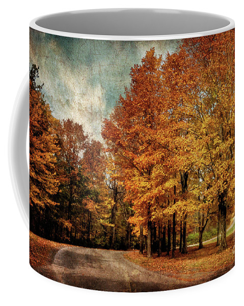 Country Road Coffee Mug featuring the photograph Almost Home by Lois Bryan