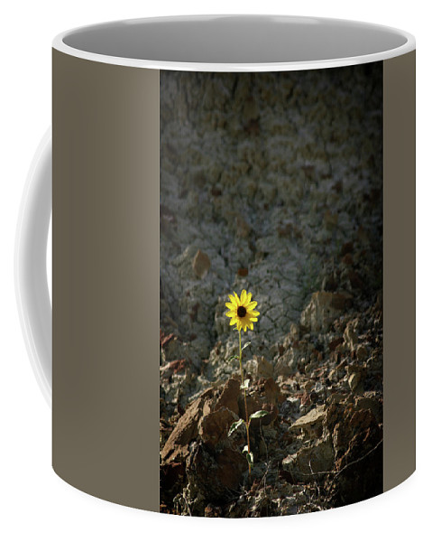 Daisy Coffee Mug featuring the photograph Alone - 365-328 by Inge Riis McDonald