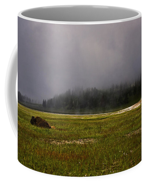 Nature Coffee Mug featuring the photograph Alone In Fog by John K Sampson