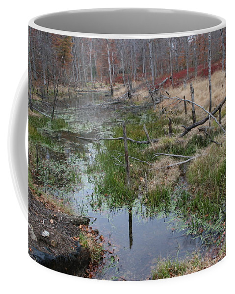 Swamp Coffee Mug featuring the photograph Alone by Susan Clay