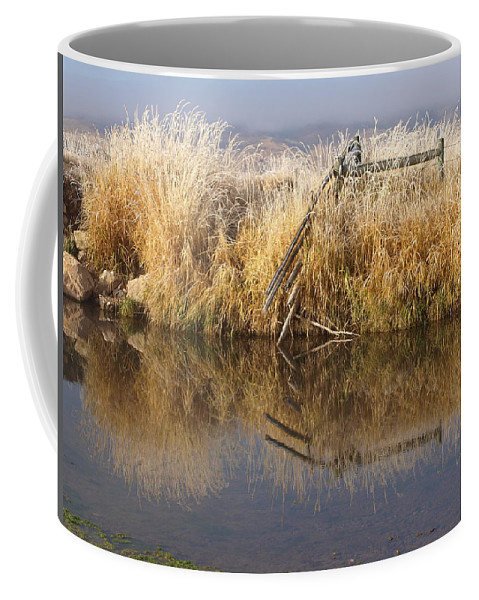 Water Coffee Mug featuring the photograph Along The Banks by DeeLon Merritt
