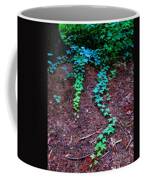 Landscape Coffee Mug featuring the photograph Along The Path by September Stone