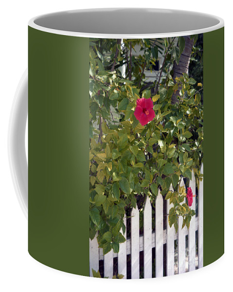 Azelea Coffee Mug featuring the photograph Along The Picket Fence by Richard Rizzo