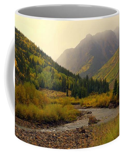 Colorado Coffee Mug featuring the photograph Alpine Loop Fall by Marty Koch
