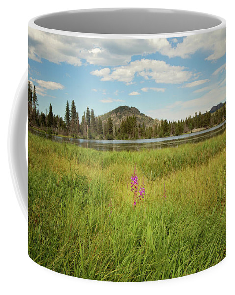Landscapes Coffee Mug featuring the photograph Alpine Meadow by Sue Collura