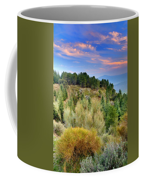 Sunset Coffee Mug featuring the photograph Alpujarras Forest At Sunset by Guido Montanes Castillo