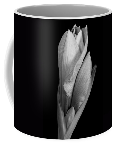 Amaryllis Coffee Mug featuring the photograph Amaryllis In Black And White by James BO Insogna