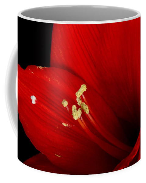 Amaryllis Coffee Mug featuring the photograph Amaryllis Pollen by James BO Insogna