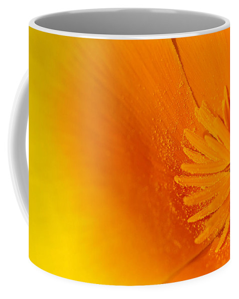 Background Coffee Mug featuring the photograph Amazing Colors by Paulo Goncalves
