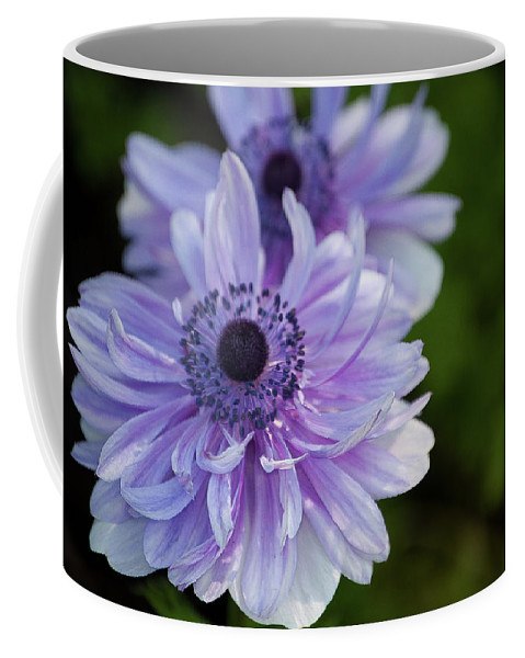 Purple Coffee Mug featuring the photograph Amazing Purple by Trish Tritz