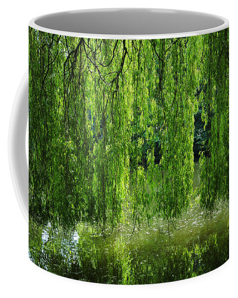 Countryside Coffee Mug featuring the photograph Amazing Tree by Svetlana Sewell