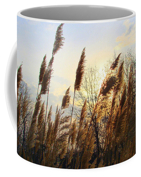 Pampasgrass Coffee Mug featuring the photograph Amber Waves Of Pampas Grass by J R Seymour