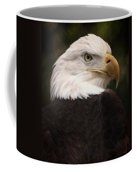 Bald Eagle Coffee Mug featuring the photograph American Bald Eagle by Joseph G Holland