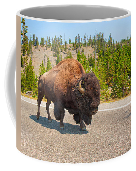 American Bison Coffee Mug featuring the photograph American Bison Sharing The Road In Yellowstone by John M Bailey