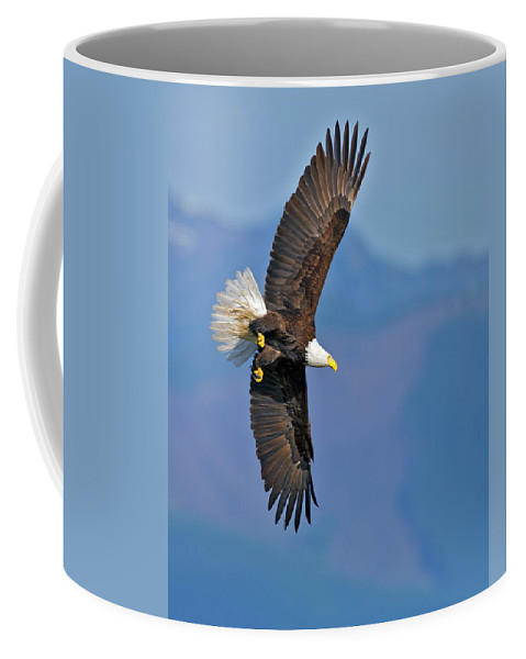 American Coffee Mug featuring the photograph American Blad Eagle On The Wing by Gary Langley
