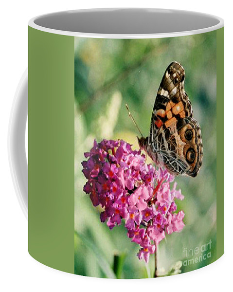 Butterfly Coffee Mug featuring the photograph American Painted Lady by Donna Brown