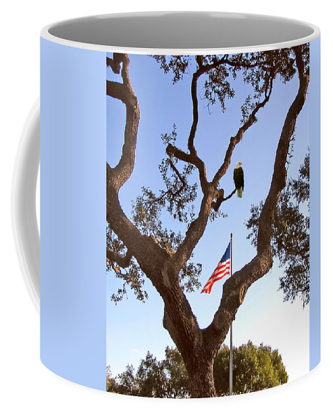 Eagle Coffee Mug featuring the photograph American Pride by Adele Moscaritolo