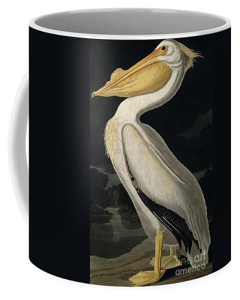 American White Pelican Coffee Mug featuring the painting American White Pelican by John James Audubon