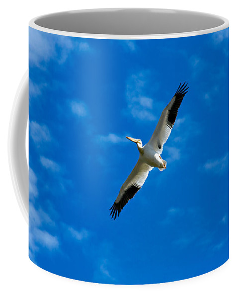 American Coffee Mug featuring the photograph American White Pelican by Marilyn Hunt