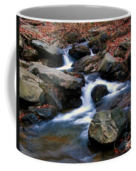 Water Coffee Mug featuring the photograph Amicalola Stream by Robert Meanor