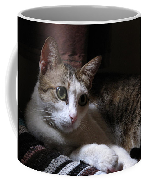 Ammani My Pet Cat Coffee Mug featuring the pyrography Ammani The Cat by Asha Sudhaker Shenoy