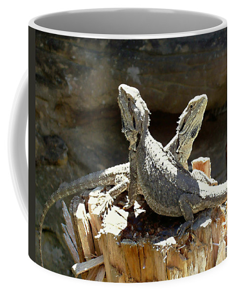 Amphion And Zethus Coffee Mug featuring the photograph Amphion And Zethus by Ellen Henneke