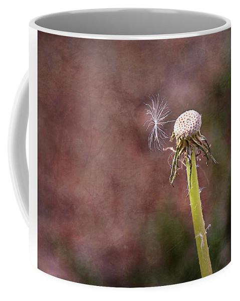Dandelion Coffee Mug featuring the photograph An Adventure Awaits by Jennifer Grossnickle