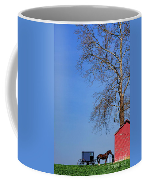 Amish Coffee Mug featuring the photograph An Amish Scene by Olivier Le Queinec