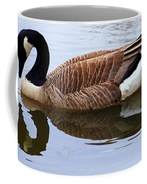 Bashful Coffee Mug featuring the photograph An Elegant Pose by Frozen in Time Fine Art Photography