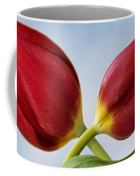 Tulip Coffee Mug featuring the photograph An Embrace Of Tulips by John Edwards