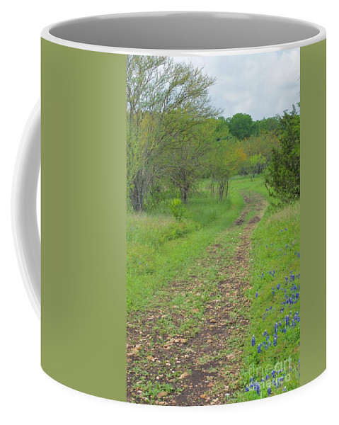 Path Coffee Mug featuring the photograph An Inviting Path by Gary Richards